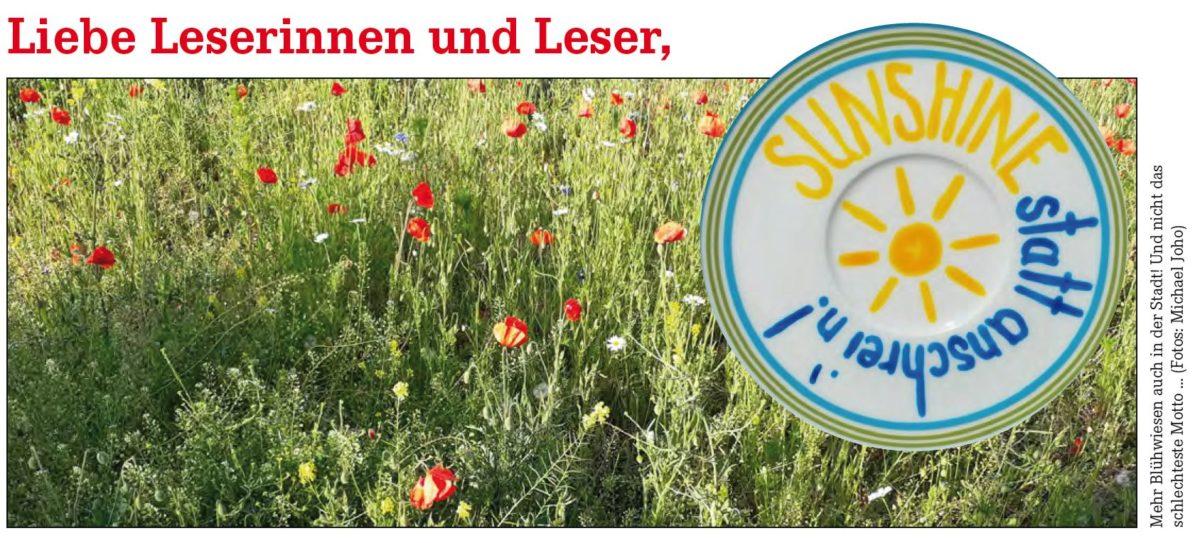 Nehmt dies: Neuer Bürger*innen-Brief über Hamburg, Politik und Parlament